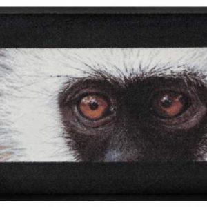 Állatos prémium lábtörlő – majom
