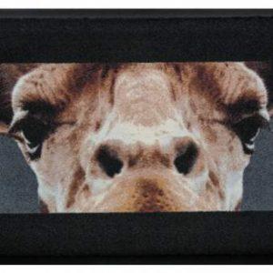 Állatos prémium lábtörlő – zsiráf