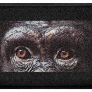 Állatos prémium lábtörlő – csimpánz