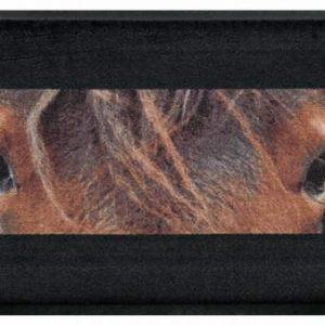 Állatos prémium lábtörlő – barna ló