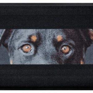 Állatos prémium lábtörlő – fekete kutya