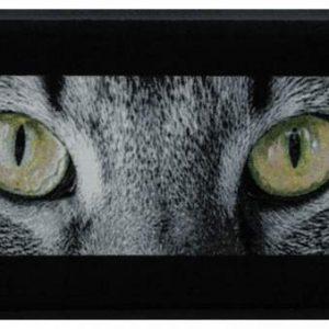 Állatos prémium lábtörlő – macskaszem