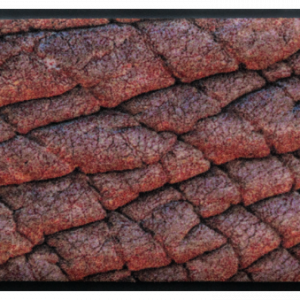 Állatos prémium lábtörlő – elefánt bőr