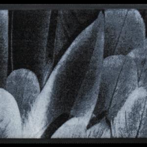 Állatos prémium lábtörlő – szürke madártollak