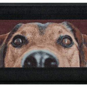 Állatos prémium lábtörlő – barna kutya