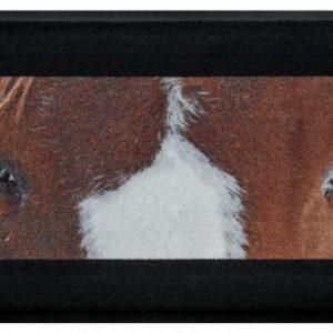 Állatos prémium lábtörlő – foltos ló