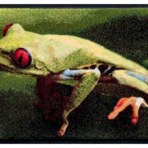 Állatos prémium lábtörlő – levelibéka