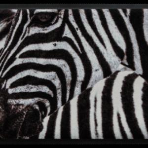 Állatos prémium lábtörlő – zebra