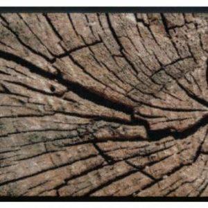 Elemek prémium lábtörlő – farönk