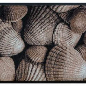 Elemek prémium lábtörlő – kagylók