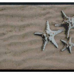 Elemek prémium lábtörlő – tengeri csillagok