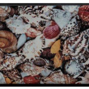 Elemek prémium lábtörlő – színes kagylók