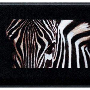 Elegáns prémium lábtörlő – zebra