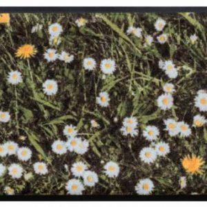 Virágok és levelek prémium lábtörlő – margaréta